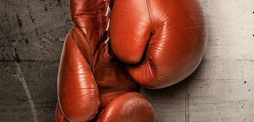 Boxing glove represents the fight between local businesses and Wag! dog walking