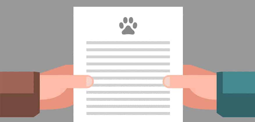 Illustration of two hands holding a dog walking contract.