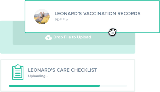 A computer hand cursor dragging and dropping a vaccination document into Cloud Storage in the Scout app for dog walking and pet sitting companies.