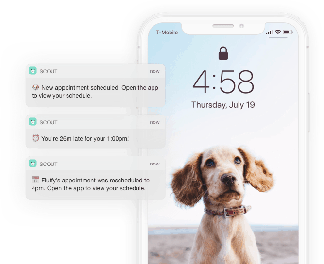 Push Notifications sent to the Scout for Pet Sitters app
